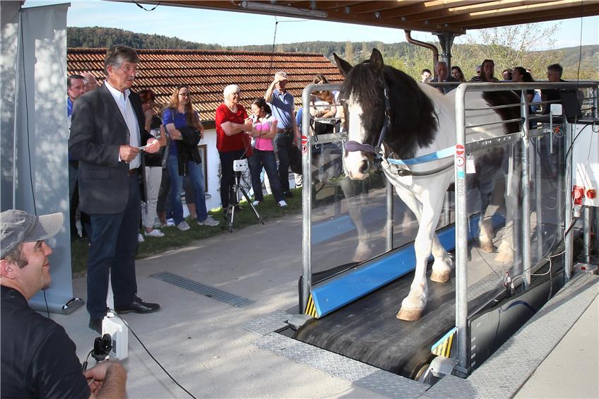 https://www.tagblatt.de/Nachrichten/Tiermediziner-schicken-Pferde-aufs-Laufband-371020.html http://www.tagblatt.de/Bilder/Hightech-in-der-Tierklinik-Die-Stute-Santana-strampelt-sich-542279l.jpg