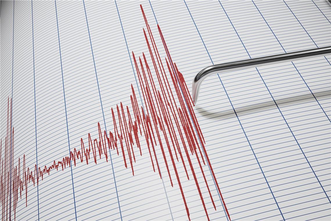 Nachtliches Erdbeben Auch Im Kreis Tubingen Deutlich Zu Spuren